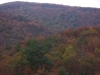 There is still color in these moountains.