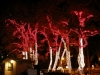 Lighted trees blinking to Christmas music at Los Abrigados Resort in Sedona.
